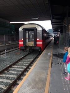Trondheim tog
